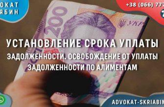 установление срока уплаты задолженности. освобождение от уплаты задолженности по алиментам